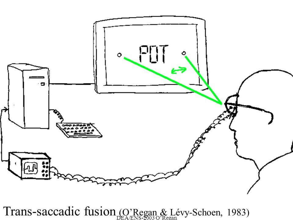 DEA/ENS-2003 ORegan Trans-saccadic fusion (ORegan & Lévy-Schoen, 1983)