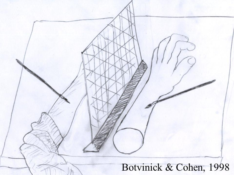 DEA/ENS-2003 ORegan Botvinick & Cohen, 1998