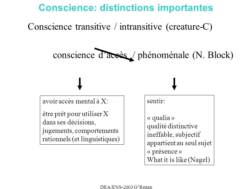 DEA/ENS-2003 ORegan Conscience: distinctions importantes Conscience transitive / intransitive (creature-C) conscience daccès / phénoménale (N.