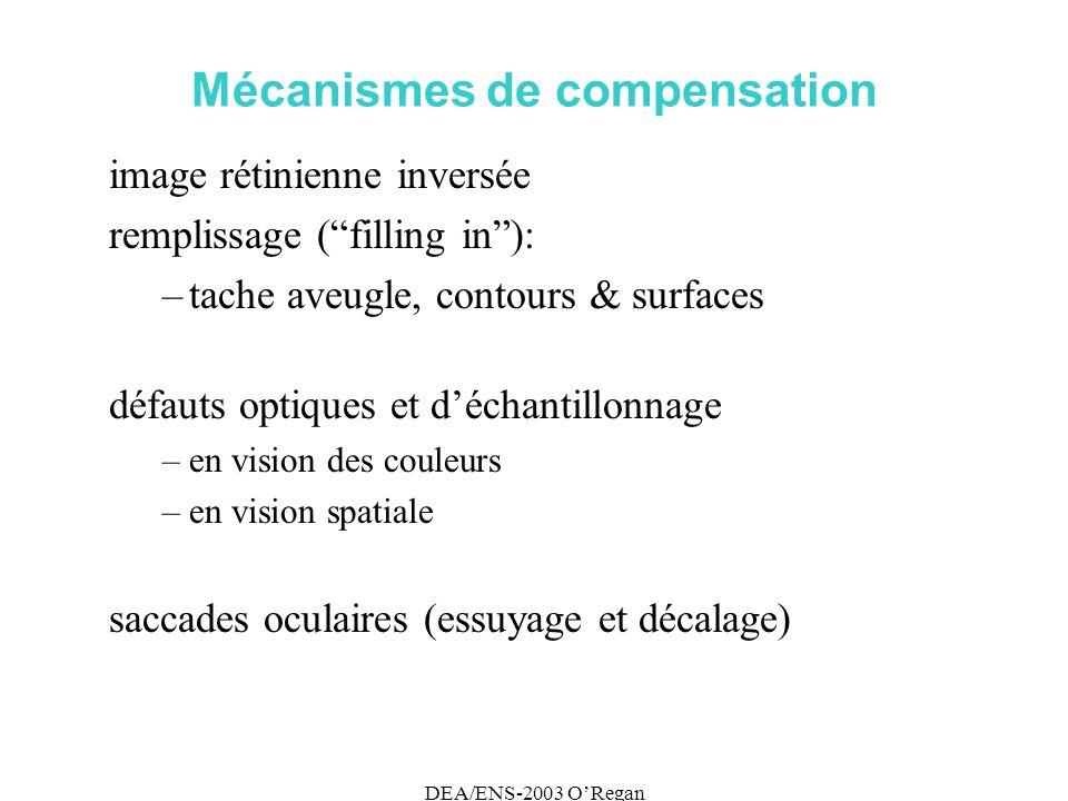 DEA/ENS-2003 ORegan Mécanismes de compensation image rétinienne inversée remplissage (filling in): –tache aveugle, contours & surfaces défauts optiques et déchantillonnage –en vision des couleurs –en vision spatiale saccades oculaires (essuyage et décalage)