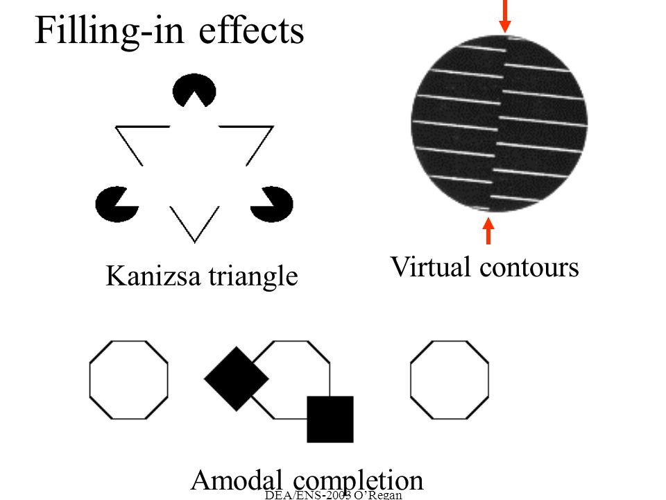 DEA/ENS-2003 ORegan Kanizsa triangle Virtual contours Filling-in effects Amodal completion