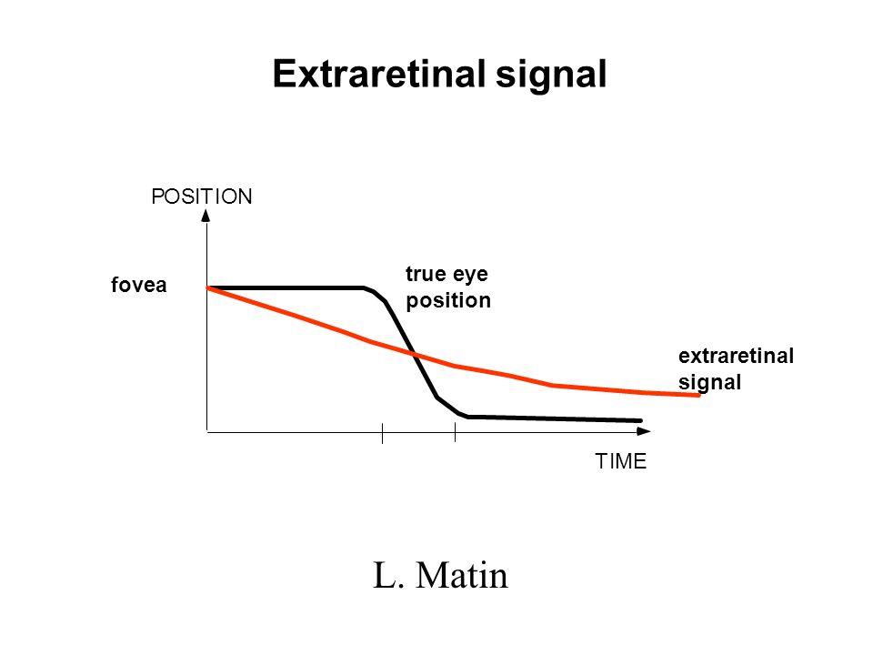 Extraretinal signal POSITION TIME fovea true eye position extraretinal signal L. Matin