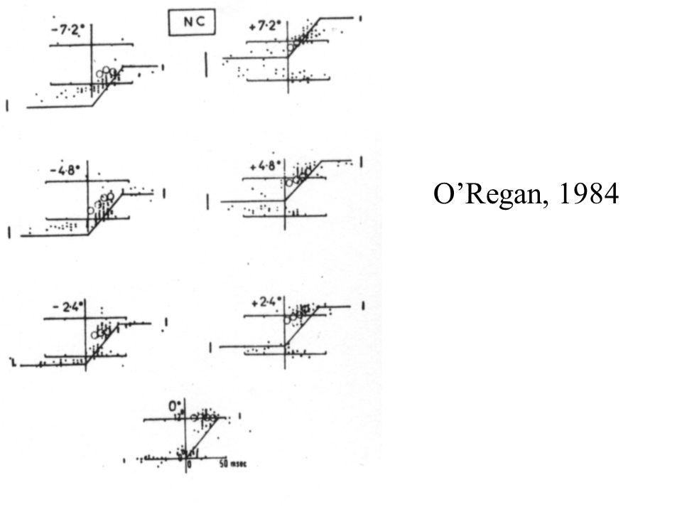 ORegan, 1984