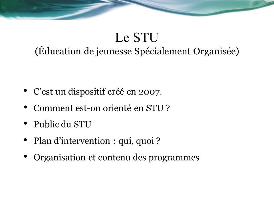 ( Le STU (Éducation de jeunesse Spécialement Organisée) Cest un dispositif créé en 2007.
