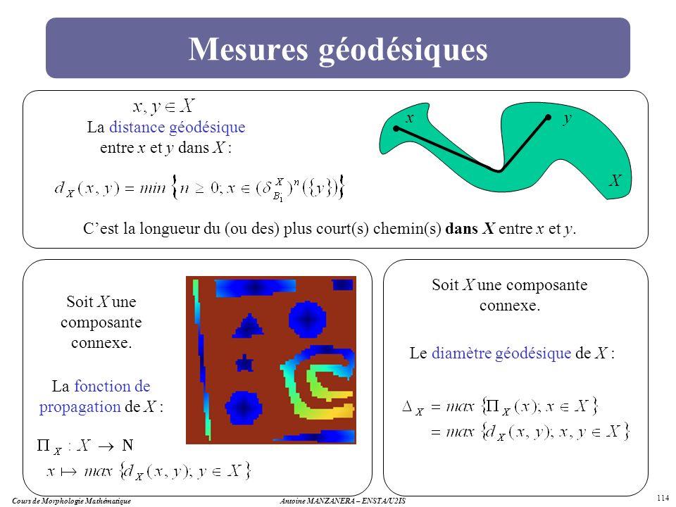 Cours de Morphologie MathématiqueAntoine MANZANERA – ENSTA/U2IS 114 Mesures géodésiques La distance géodésique entre x et y dans X : Cest la longueur