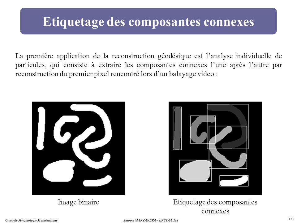 Cours de Morphologie MathématiqueAntoine MANZANERA – ENSTA/U2IS 115 Etiquetage des composantes connexes Image binaireEtiquetage des composantes connex