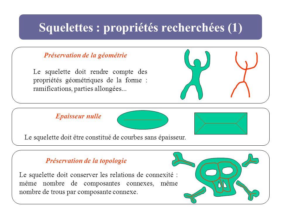 Squelettes : propriétés recherchées (1) Préservation de la géométrie Le squelette doit rendre compte des propriétés géométriques de la forme : ramific