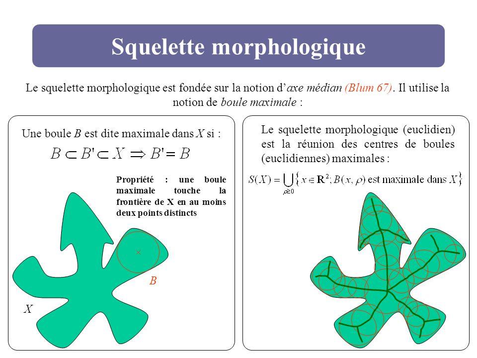 Squelette morphologique Le squelette morphologique est fondée sur la notion daxe médian (Blum 67). Il utilise la notion de boule maximale : X B Une bo