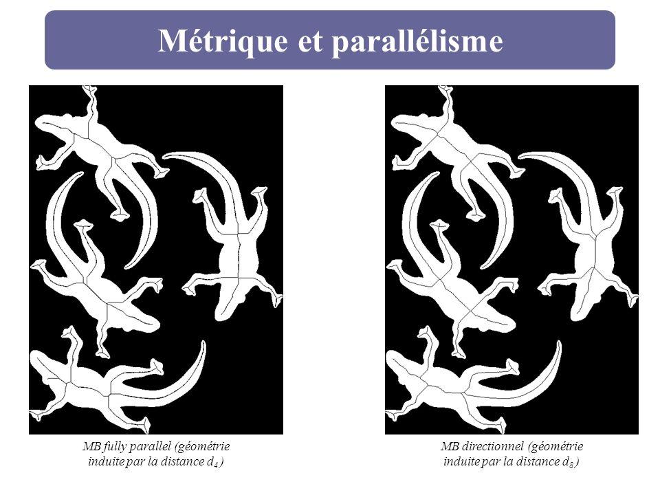 Métrique et parallélisme MB fully parallel (géométrie induite par la distance d 4 ) MB directionnel (géométrie induite par la distance d 8 )