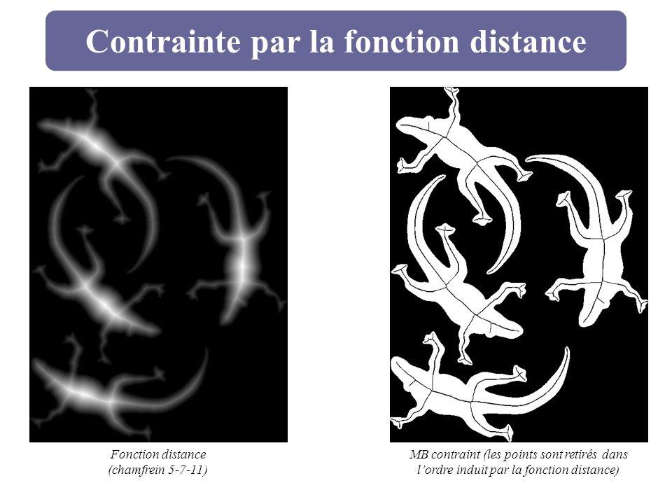 Contrainte par la fonction distance Fonction distance (chamfrein 5-7-11) MB contraint (les points sont retirés dans lordre induit par la fonction dist