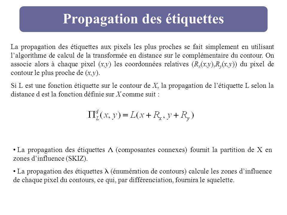 Propagation des étiquettes La propagation des étiquettes aux pixels les plus proches se fait simplement en utilisant lalgorithme de calcul de la trans
