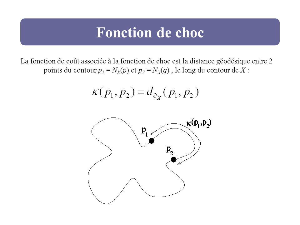 Fonction de choc La fonction de coût associée à la fonction de choc est la distance géodésique entre 2 points du contour p 1 = N X (p) et p 2 = N X (q