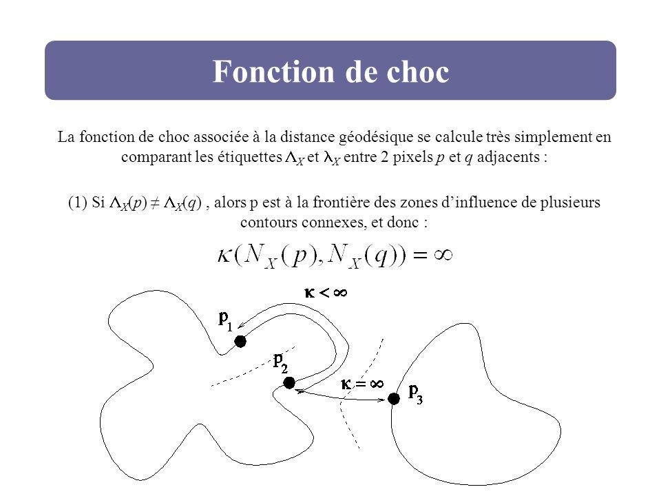 Fonction de choc La fonction de choc associée à la distance géodésique se calcule très simplement en comparant les étiquettes X et X entre 2 pixels p