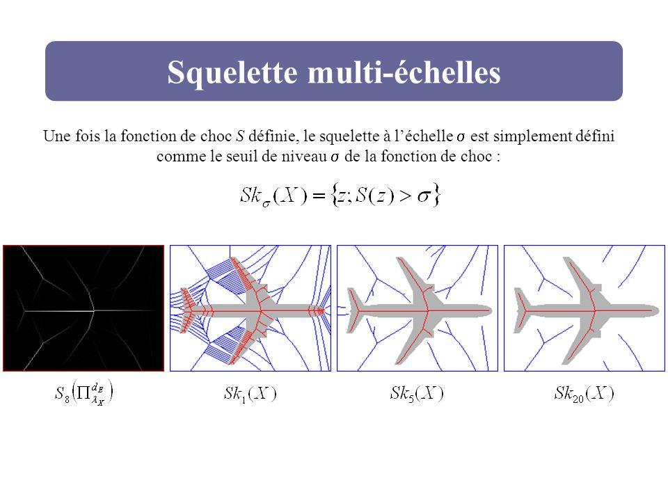 Squelette multi-échelles Une fois la fonction de choc S définie, le squelette à léchelle est simplement défini comme le seuil de niveau de la fonction