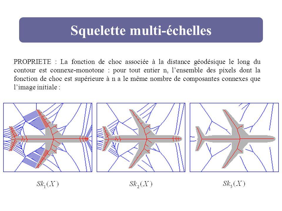 Squelette multi-échelles PROPRIETE : La fonction de choc associée à la distance géodésique le long du contour est connexe-monotone : pour tout entier