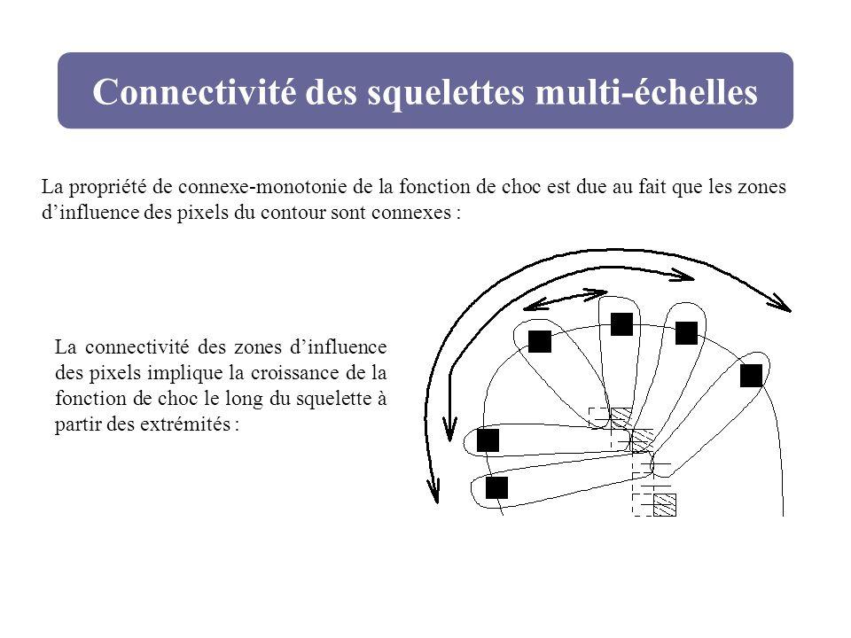 Connectivité des squelettes multi-échelles La propriété de connexe-monotonie de la fonction de choc est due au fait que les zones dinfluence des pixel
