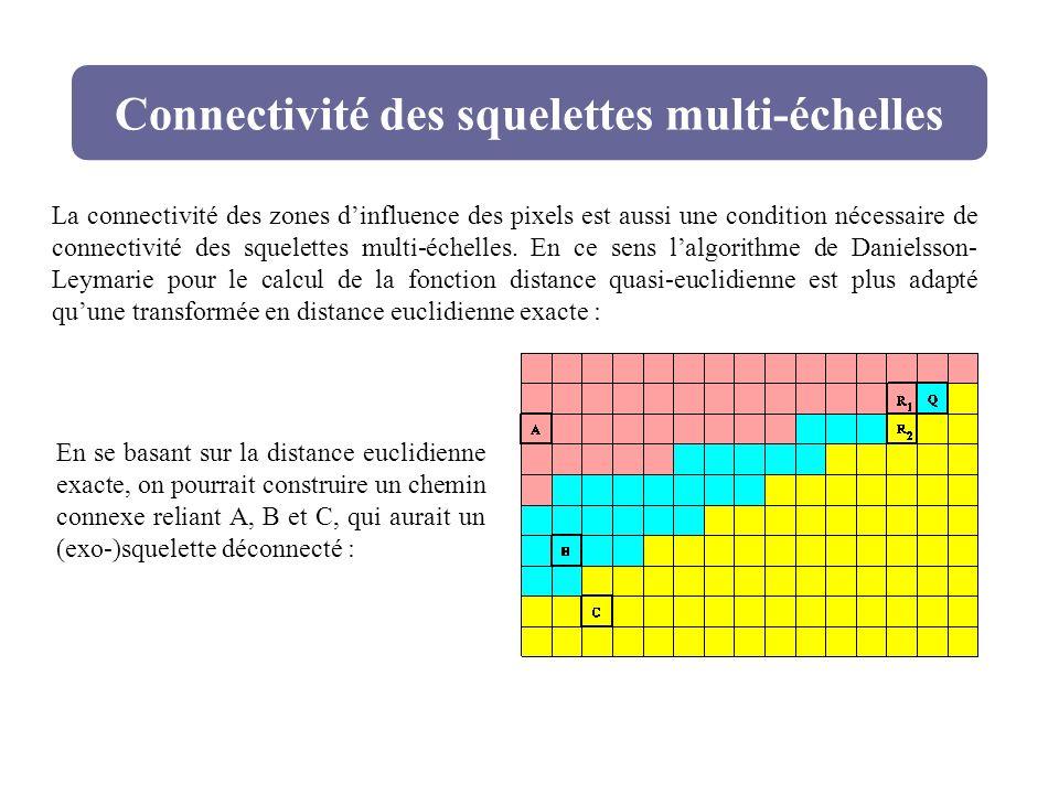 Connectivité des squelettes multi-échelles La connectivité des zones dinfluence des pixels est aussi une condition nécessaire de connectivité des sque
