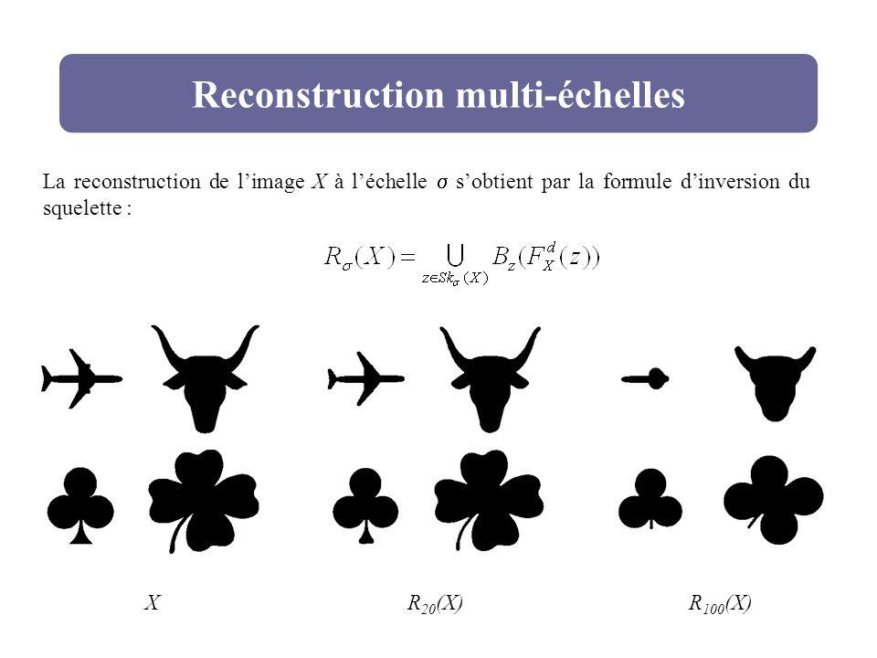 Reconstruction multi-échelles La reconstruction de limage X à léchelle sobtient par la formule dinversion du squelette : XR 20 (X)R 100 (X)