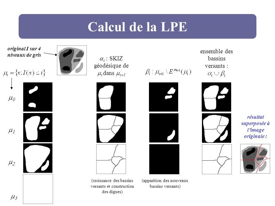 Calcul de la LPE : SKIZ géodésique de dans ensemble des bassins versants : résultat superposée à limage originale : original I sur 4 niveaux de gris (
