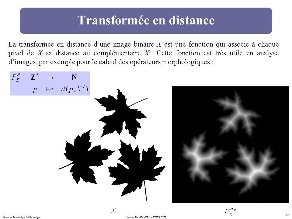 Cours de Morphologie MathématiqueAntoine MANZANERA – ENSTA/U2IS 65 Transformée en distance La transformée en distance dune image binaire X est une fon