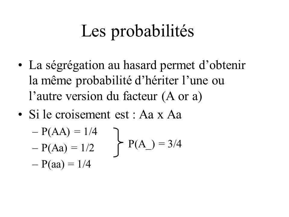 Les probabilités La ségrégation au hasard permet dobtenir la même probabilité dhériter lune ou lautre version du facteur (A or a) Si le croisement est