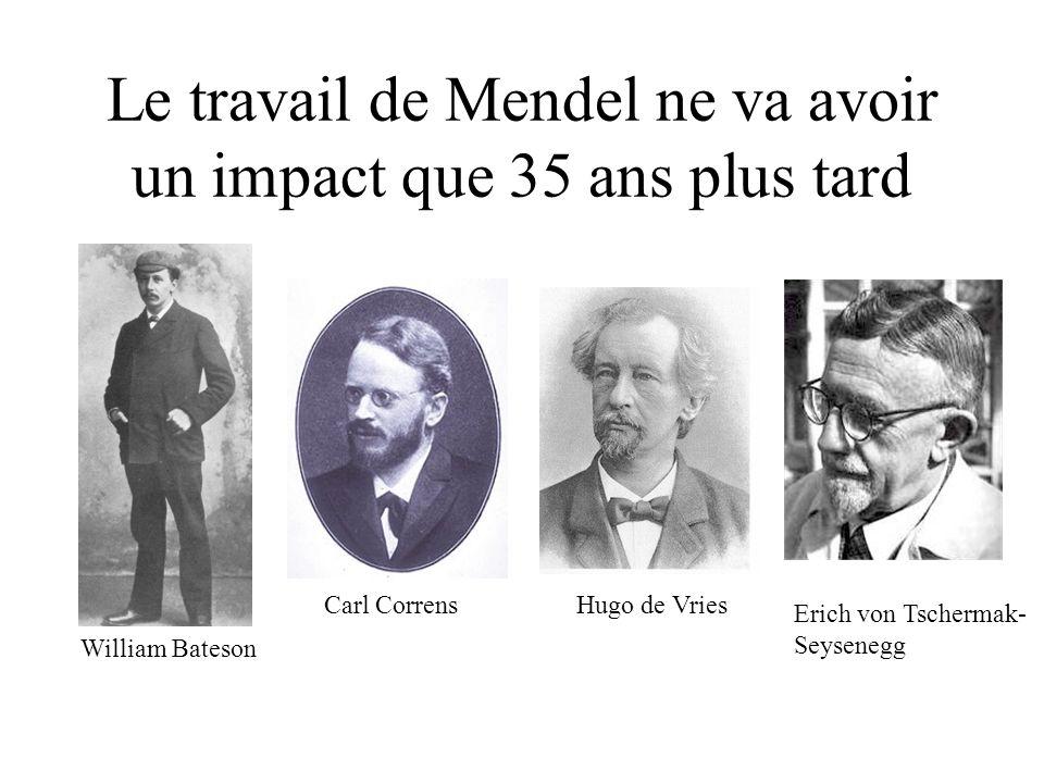 Le travail de Mendel ne va avoir un impact que 35 ans plus tard William Bateson Carl CorrensHugo de Vries Erich von Tschermak- Seysenegg