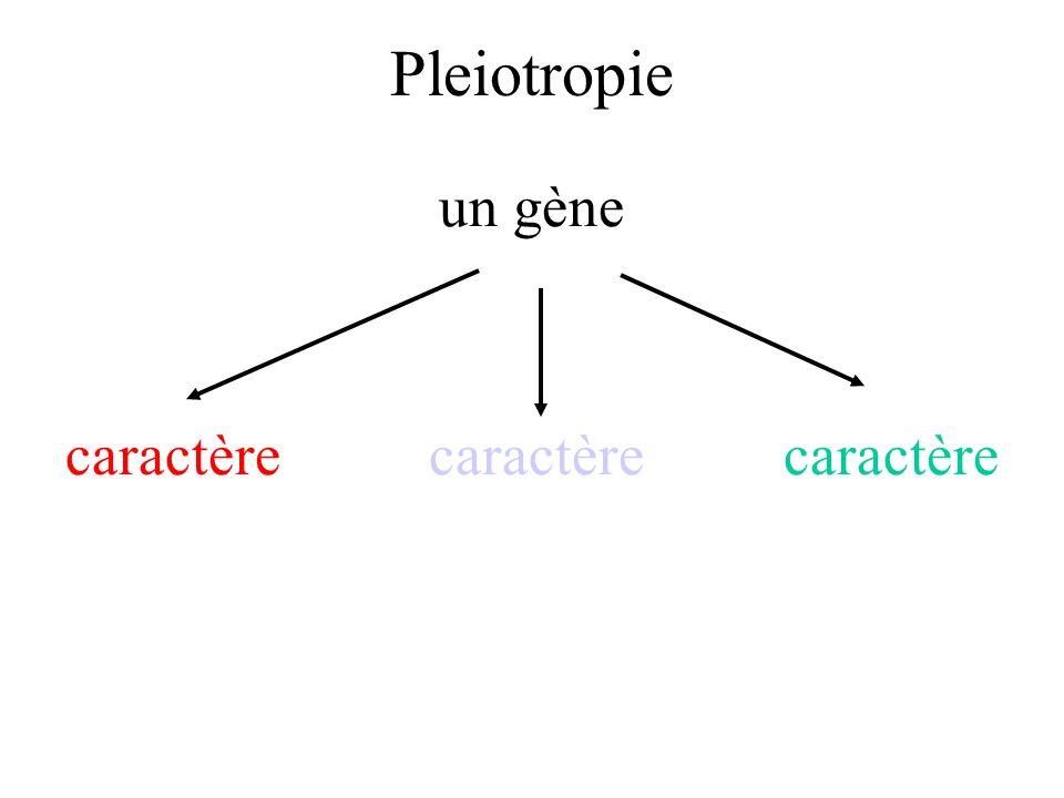 Pleiotropie un gène caractère