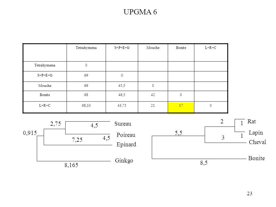 23 UPGMA 6 TetrahymenaS+P+E+GMoucheBoniteL+R+C Tetrahymena0 S+P+E+G690 Mouche6945,50 Bonite6846,5420 L+R+C68,3343,7521170 Rat Lapin 1 1 Cheval 2 3 Bon