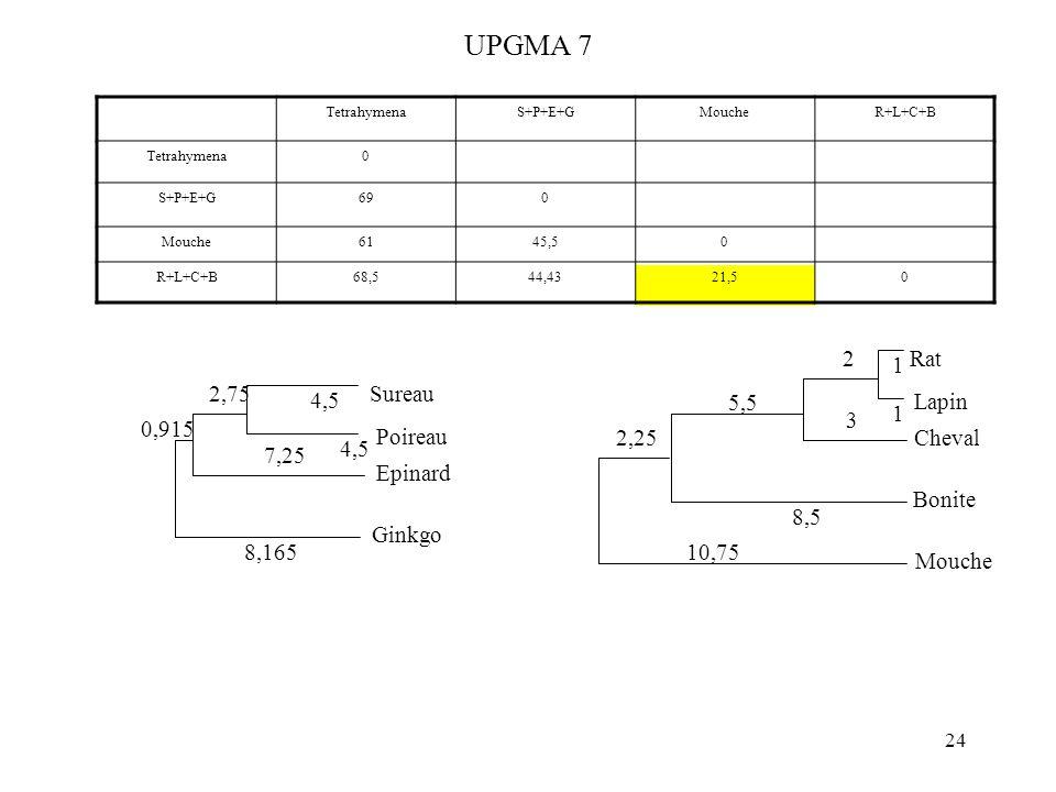 24 UPGMA 7 TetrahymenaS+P+E+GMoucheR+L+C+B Tetrahymena0 S+P+E+G690 Mouche6145,50 R+L+C+B68,544,4321,50 4,5 Sureau Poireau 4,5 Epinard 2,75 7,25 Ginkgo