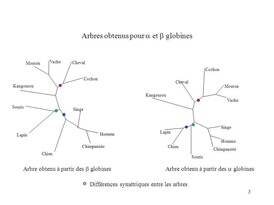 34 Méthodes agglomératives Distances métriques et additives Voir la formule Arbre non raciné Distances ultramétriques Vitesse constante sur toutes les branches Arbre raciné NJUPGMA
