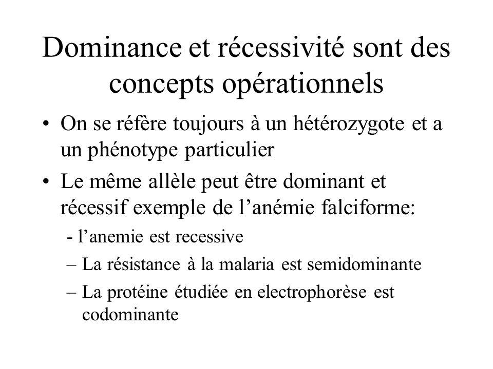 Dominance et récessivité sont des concepts opérationnels On se réfère toujours à un hétérozygote et a un phénotype particulier Le même allèle peut êtr