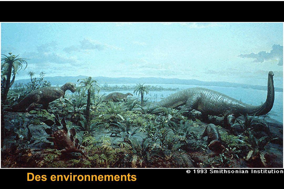 Des environnements