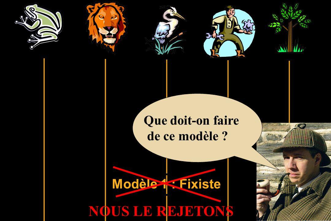 Modèle 1 : Fixiste Que doit-on faire de ce modèle ? NOUS LE REJETONS