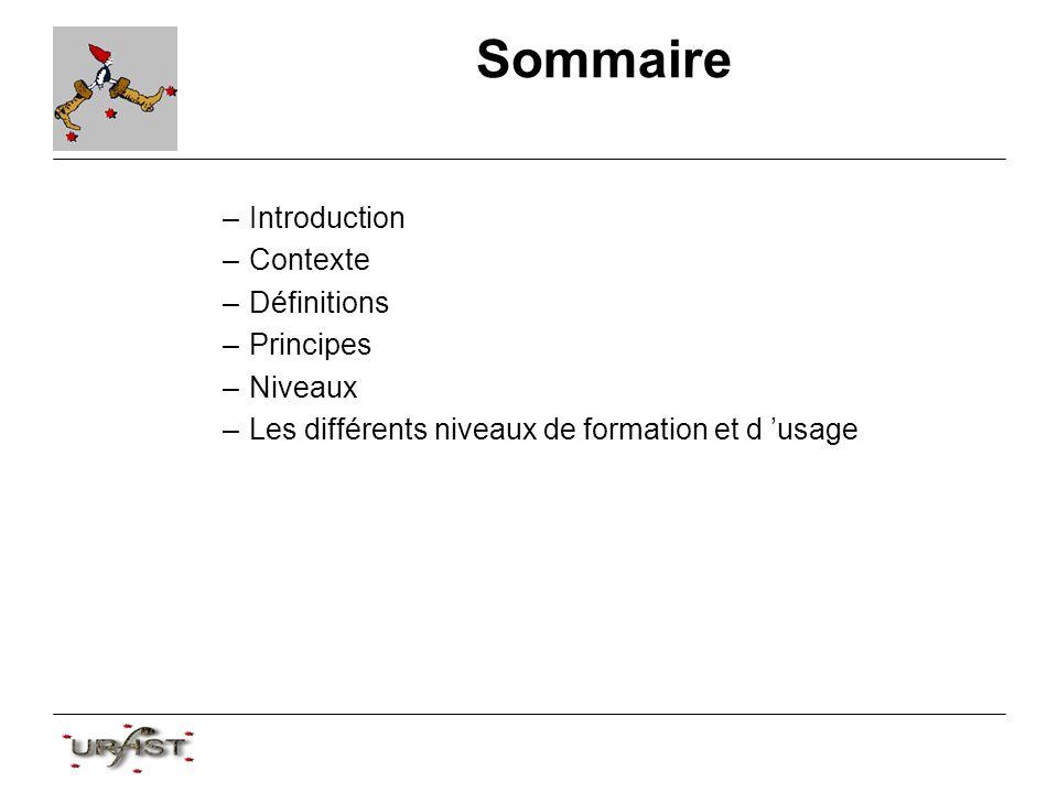 Sommaire –Introduction –Contexte –Définitions –Principes –Niveaux –Les différents niveaux de formation et d usage