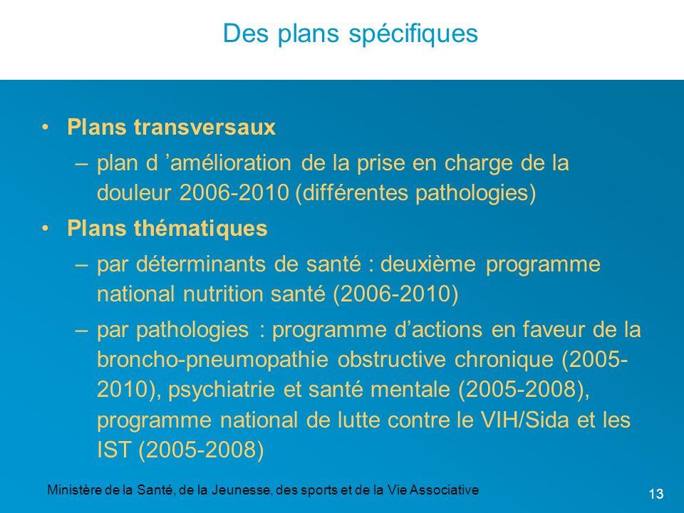 Ministère de la Santé, de la Jeunesse, des sports et de la Vie Associative 13 Des plans spécifiques Plans transversaux –plan d amélioration de la pris