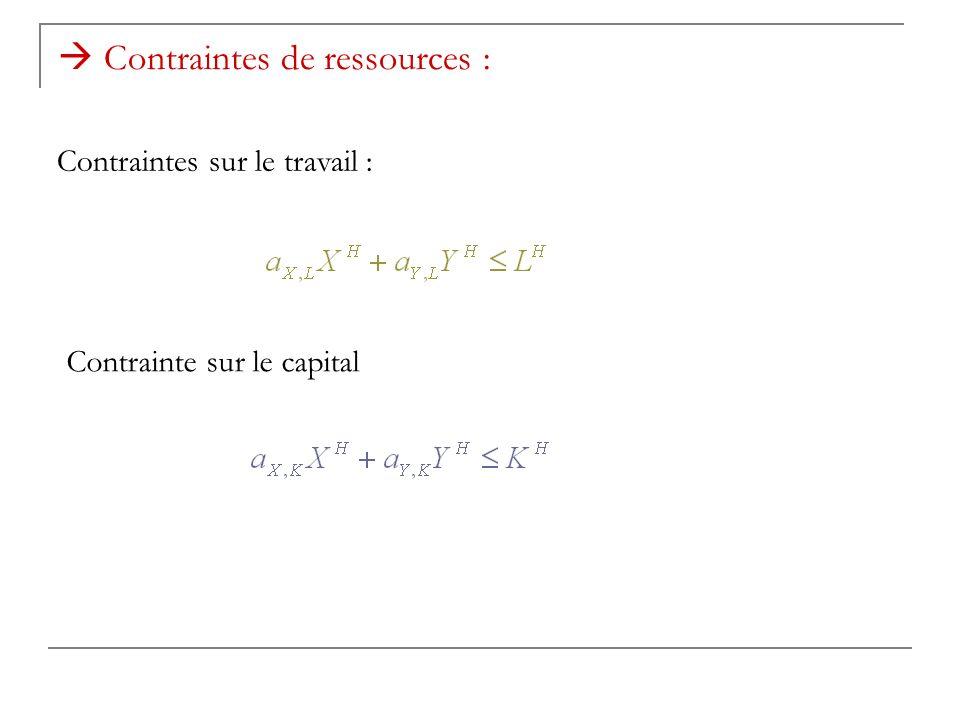 Contraintes de ressources : Contraintes sur le travail : Contrainte sur le capital