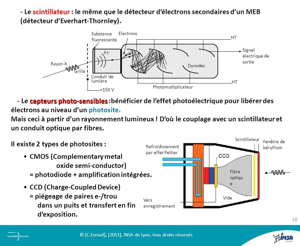 scintillateur - Le scintillateur : le même que le détecteur délectrons secondaires dun MEB (détecteur dEverhart-Thornley). HT Dynodes Photomultiplicat