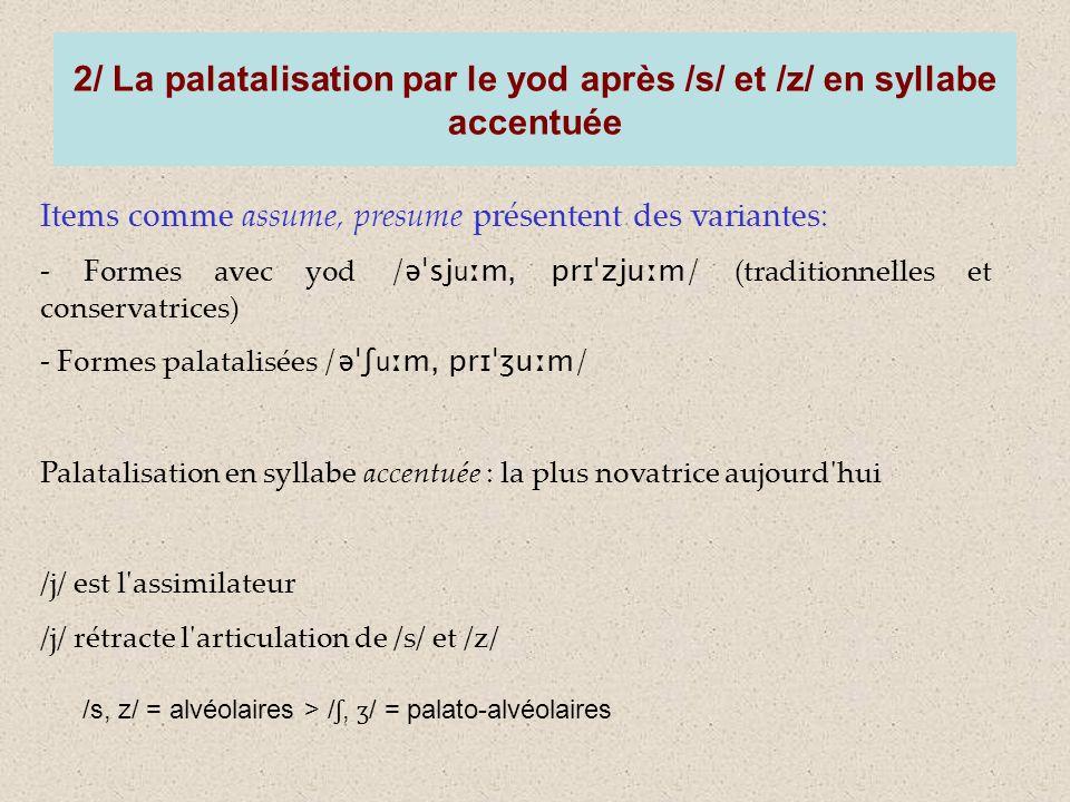 2/ La palatalisation par le yod après /s/ et /z/ en syllabe accentuée Items comme assume, presume présentent des variantes: - Formes avec yod /əˈsj u ːm, prɪˈzjuːm/ (traditionnelles et conservatrices) - Formes palatalisées /əˈʃ u ːm, prɪˈʒuːm/ Palatalisation en syllabe accentuée : la plus novatrice aujourd hui /j/ est l assimilateur /j/ rétracte l articulation de /s/ et /z/ /s, z/ = alvéolaires > / ʃ, ʒ / = palato-alvéolaires