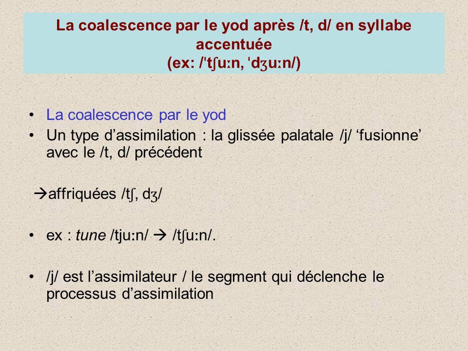 La coalescence par le yod après /t, d/ en syllabe accentuée (ex: / ˈ t ʃ u ː n, ˈ d ʒ u ː n/) La coalescence par le yod Un type dassimilation : la glissée palatale /j/ fusionne avec le /t, d/ précédent affriquées /t ʃ, d ʒ / ex : tune /tju ː n/ /t ʃ u ː n/.
