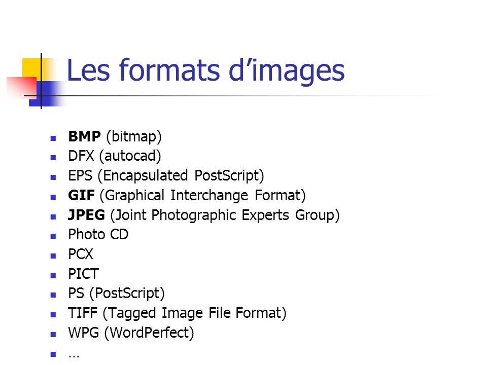 BitMap Ce format créé par Microsoft et IBM pour son système d exploitation, a été conçu dans le but d être affiché sur n importe quel display indépendamment de la méthode choisie.
