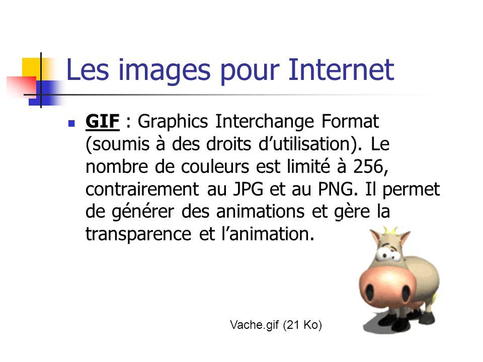 Les images pour Internet GIF : Graphics Interchange Format (soumis à des droits dutilisation). Le nombre de couleurs est limité à 256, contrairement a
