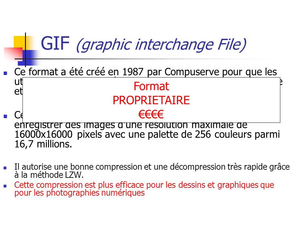 GIF (graphic interchange File) Ce format a été créé en 1987 par Compuserve pour que les utilisateurs puissent s'échanger des images de façon efficace
