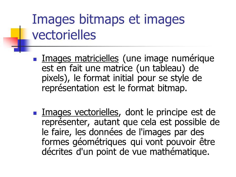 Images bitmaps et images vectorielles Images matricielles (une image numérique est en fait une matrice (un tableau) de pixels), le format initial pour se style de représentation est le format bitmap.