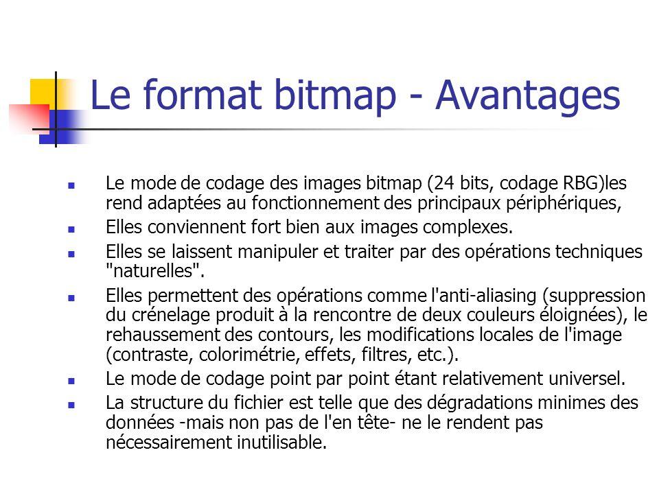 Le format bitmap - Avantages Le mode de codage des images bitmap (24 bits, codage RBG)les rend adaptées au fonctionnement des principaux périphériques, Elles conviennent fort bien aux images complexes.