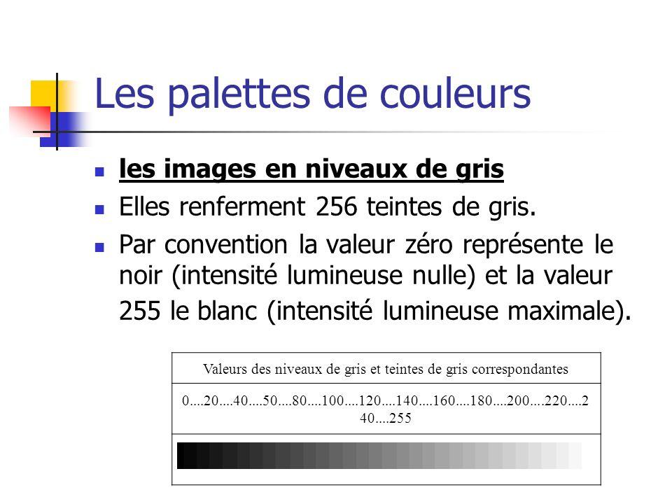 Les palettes de couleurs les images en niveaux de gris Elles renferment 256 teintes de gris.