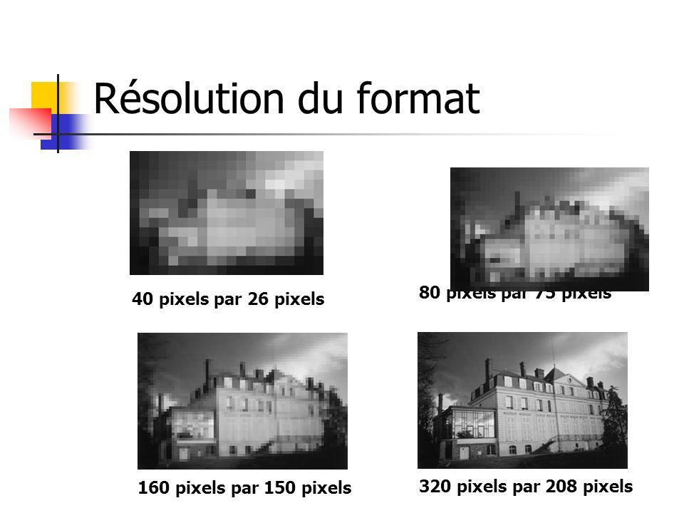 Résolution du format 40 pixels par 26 pixels 80 pixels par 75 pixels 160 pixels par 150 pixels 320 pixels par 208 pixels