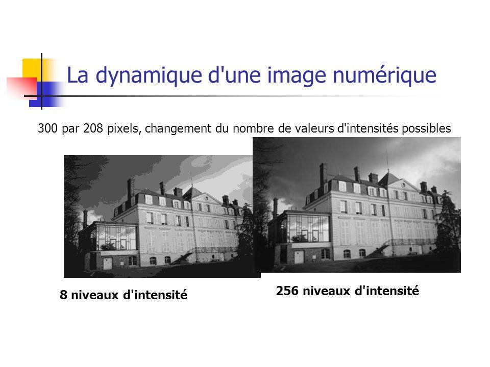 La dynamique d une image numérique Les images en vraies couleurs (24 bits) Chaque pixels peut prendre une valeur dans le RVB comprise entre 0 et 255 (soit 256*256*256 possibilités= 16 millions de possibilités).