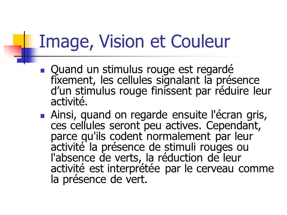 Image, Vision et Couleur Quand un stimulus rouge est regardé fixement, les cellules signalant la présence dun stimulus rouge finissent par réduire leu