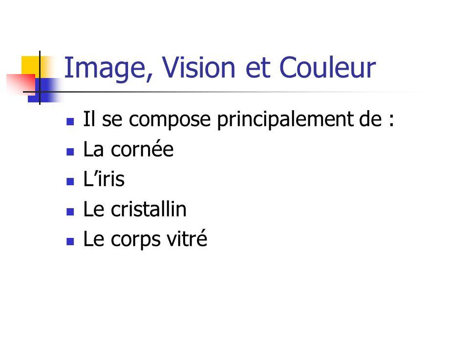 Les modèles de représentation de la couleur Modèle TSL : Spécifie chaque couleur en termes de teinte (Hue), saturation, intensité(Luminance).