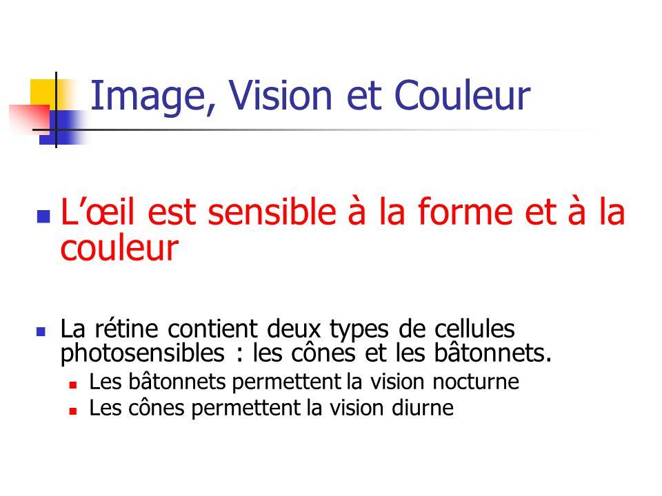 Image, Vision et Couleur Cônes et bâtonnets La rétine possède 4 à 7 millions de cônes pour 110 à 125 millions de bâtonnets.